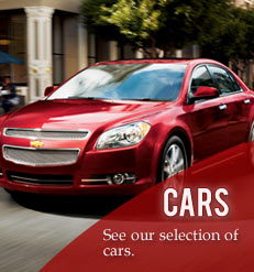 Search our car inventory